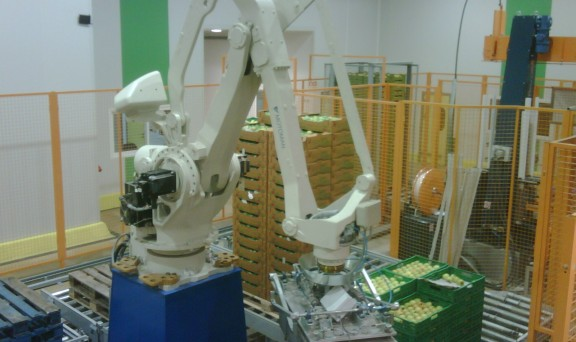 Palletizing Systems